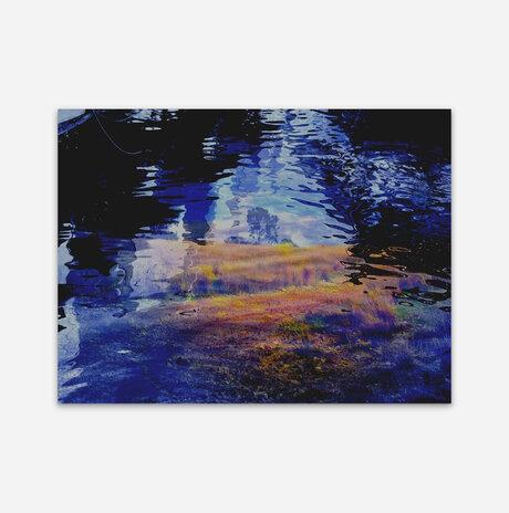 Impressionist Field /
