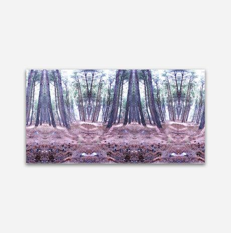 Oblong forest /