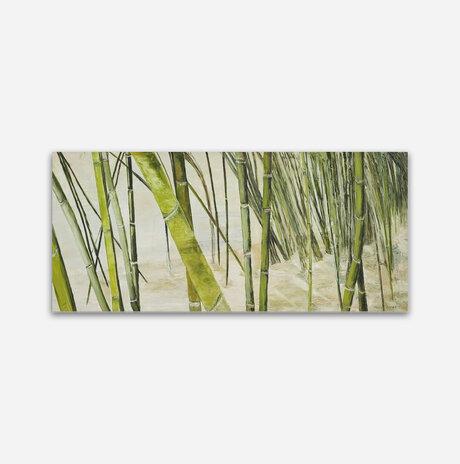 יער במבוק / ורדה בר ניר
