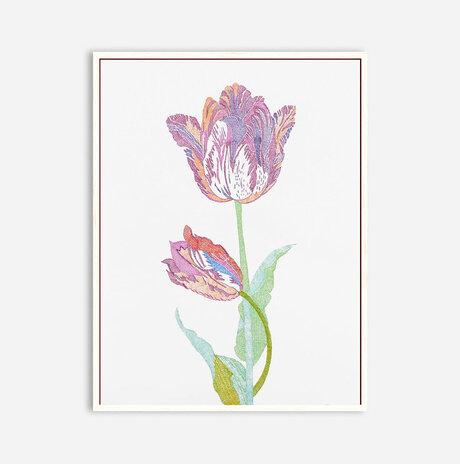 Tulip / Yael Balaban