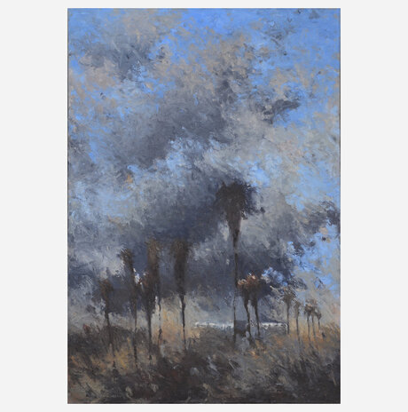 Palm trees / Noa Arbel