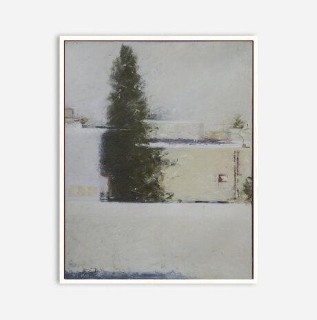 Cypress / Noa Arbel