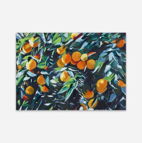 תפוזים / שרה ליפקין