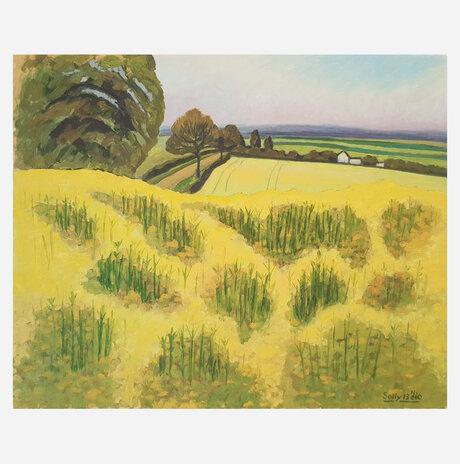 שמן זרעי אוונס, אנגליה / סולומון (סולי) גילוס