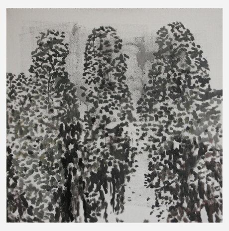 Cypresses / Hagit kazinitz