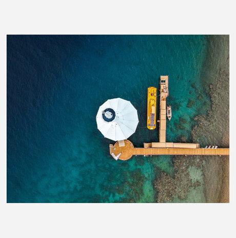 הצוללת הצהובה / גל צאושו