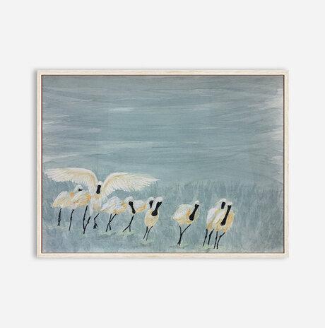 Pelicans / Dalia Zerachia