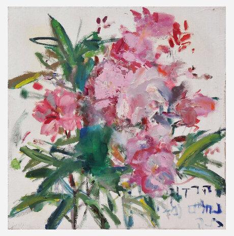 Oleander / Nurit Gur Lavy