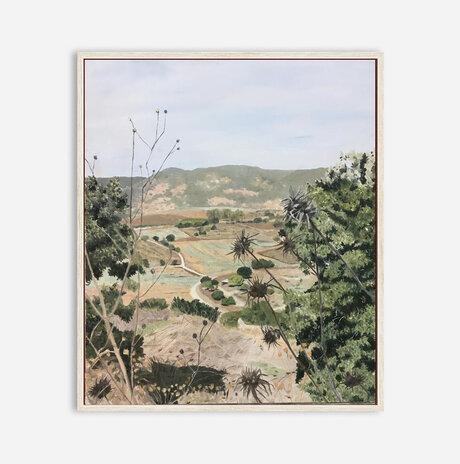 Carmel view, late spring / Zohar Flax