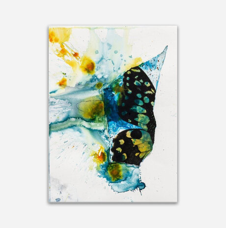butterfly in the rain / Chervinski Mirit