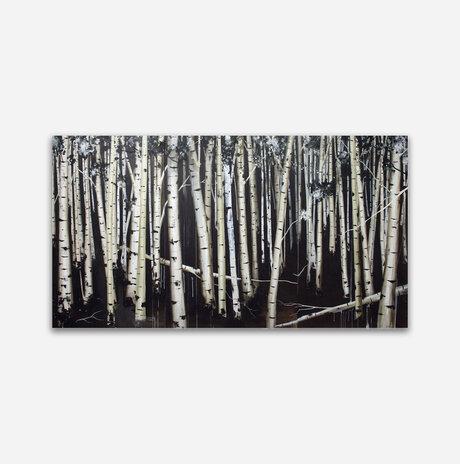 יער מס