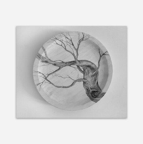 Diameter #15 / Aya Eliav
