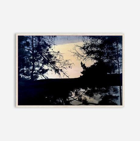 Woods #14 / Aya Eliav