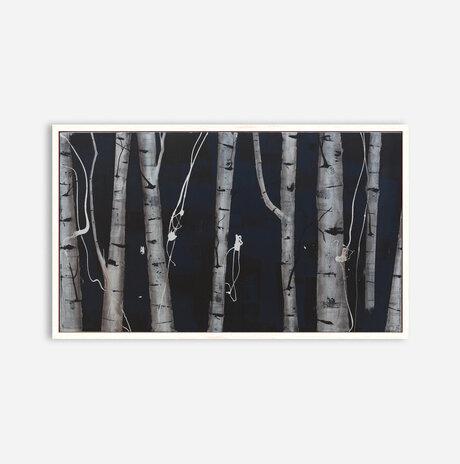 Woods #1006 / Aya Eliav