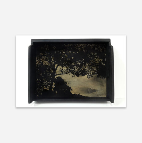 Nature In a Box #01 / Aya Eliav
