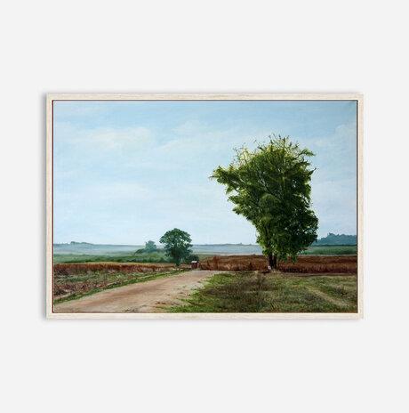 נוף בשדות משמר העמק / אסף רודריגז