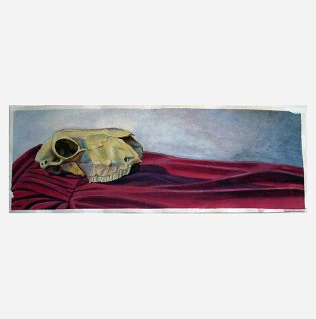 Skull on Red Drapery / Jonathan Beck