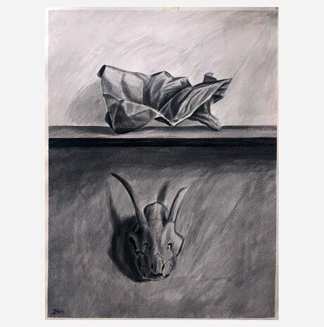 Crumpled Paper and Skull / Jonathan Beck