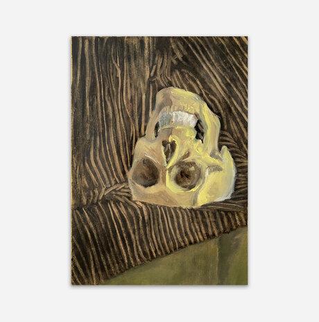 Skull on striped drapery / Jonathan Beck
