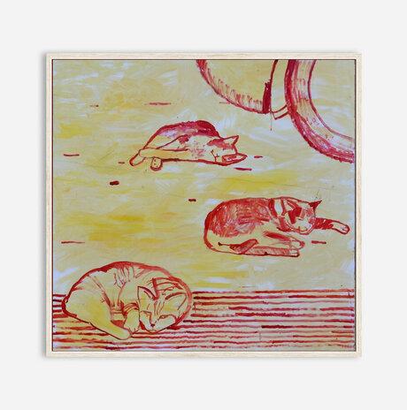 street cats / Nili Ariely